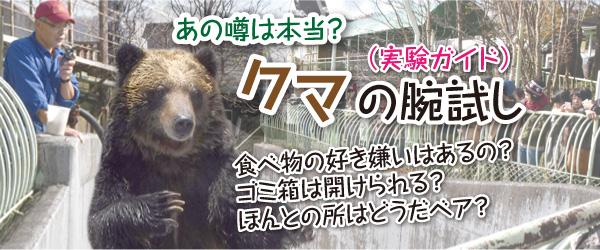 クマの腕試し(実験ガイド)