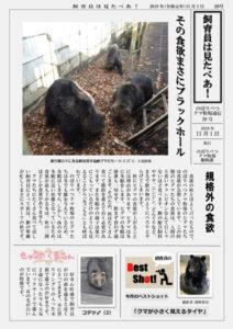 のぼりべつクマ牧場通信(新聞)29号発行!