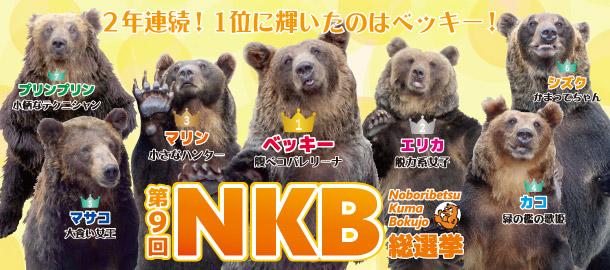nkb_catch