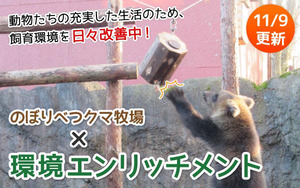 のぼりべつクマ牧場×環境エンリッチメント
