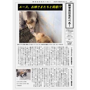 のぼりべつクマ牧場通信(新聞)48号発行!